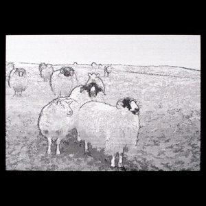 Sheep, Sheep, Sheep  8 x 20 inches. $425.